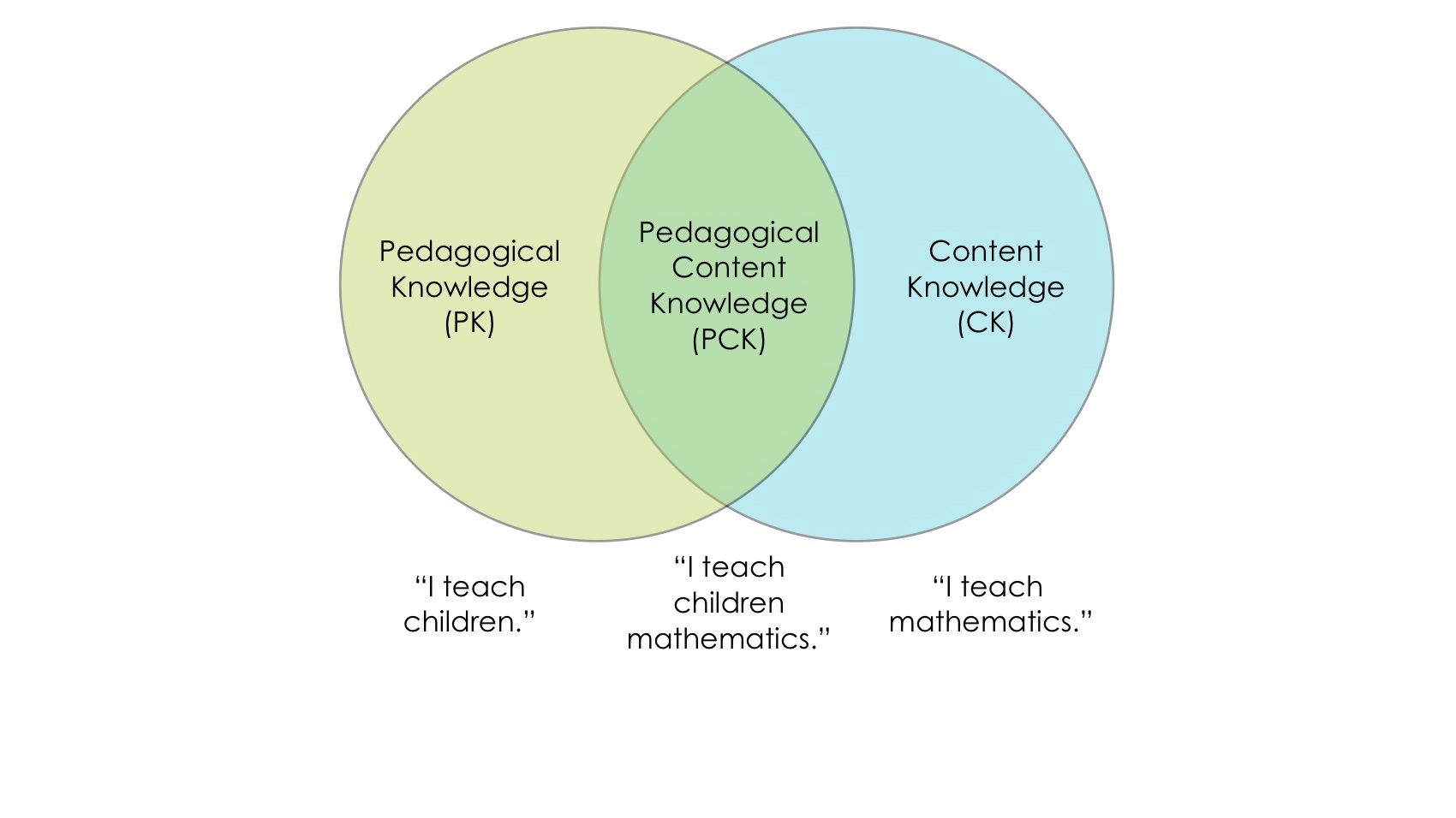 pedagogical content knowledge essay